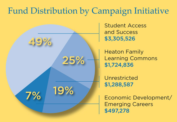 Fund Distribution by Campaign Initiative Chart