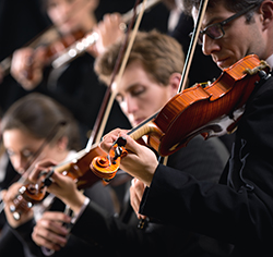 musicians playing violins and other instruments